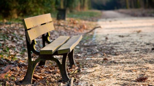 Managing Grief and Loss, Empty bench
